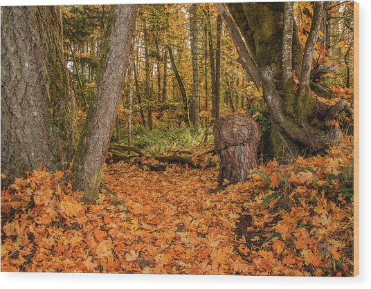 The Leaves Have Fallen Wood Print