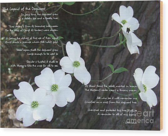 The Legend Of The Dogwood Wood Print
