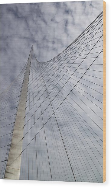 The Liberty Pole Wood Print