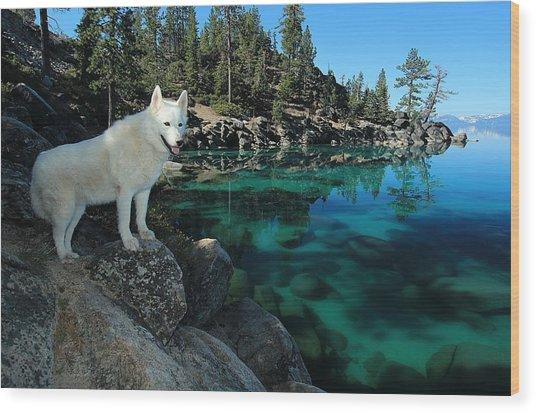 The Light Of Lake Tahoe Wood Print