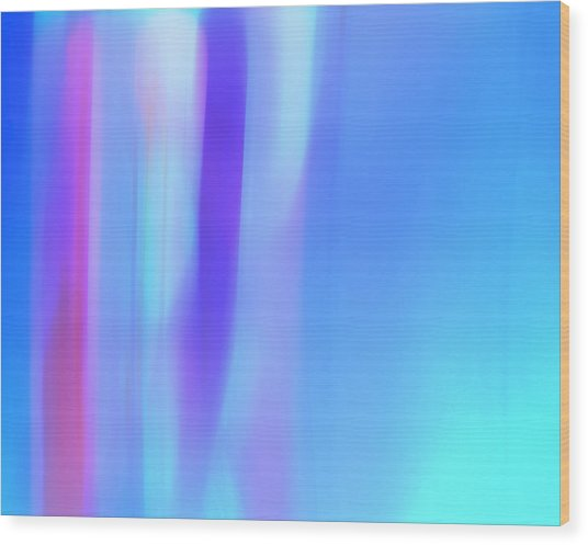 The Light Side Of The Blue Wood Print by Monica Palermo