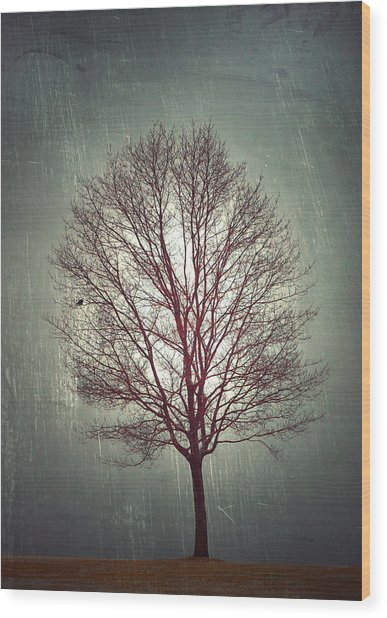 The Light Within Wood Print