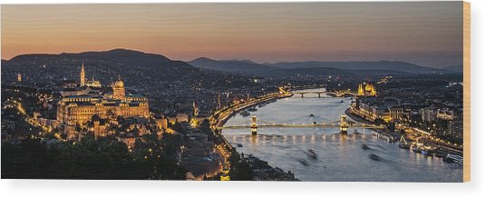 The Lights Of Budapest Wood Print