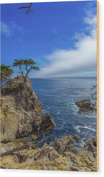 The Lone Cypress 17 Mile Drive Wood Print