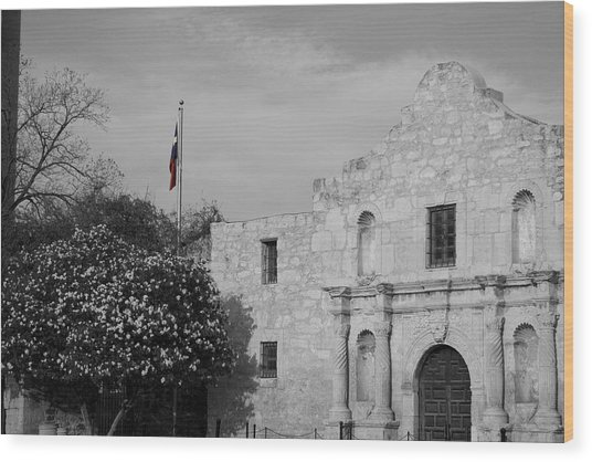 Wood Print featuring the photograph The Lone Star by Dylan Punke