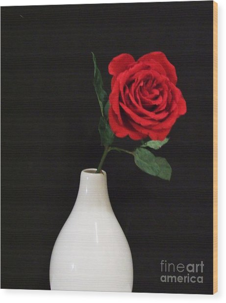 The Lonely Red Rose Wood Print by Marsha Heiken