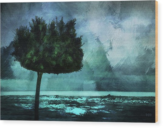 The Lonely Tree Wood Print by Declan O'Doherty