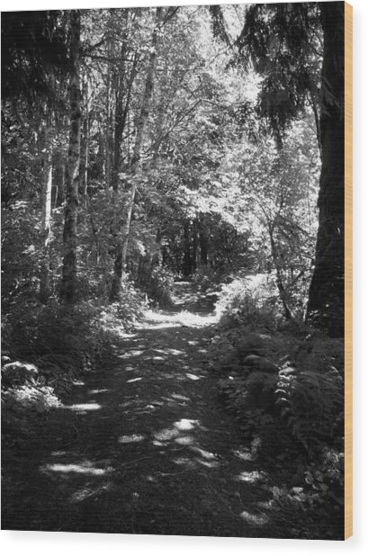 The Long And Winding Road  Bw Wood Print by Ken Day