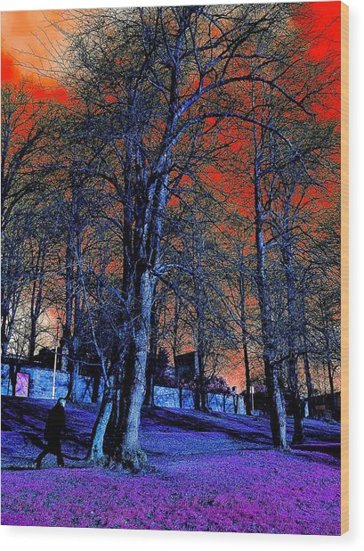 The Long Walk Home Wood Print