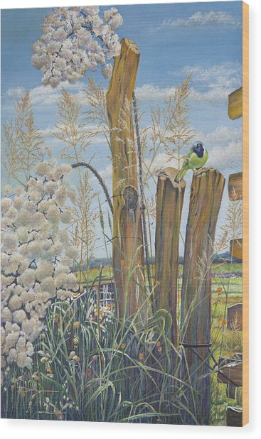 The Lookout, Texas Green Jay Wood Print