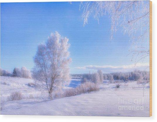 The Magic Of Winter 3 Wood Print
