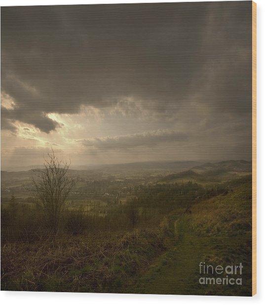 The Malvern Hills Wood Print by Angel Ciesniarska