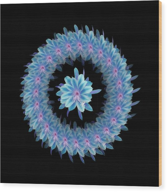 The Mandala Of Blue Hued Tropical Flower Wood Print by Jacqueline Migell
