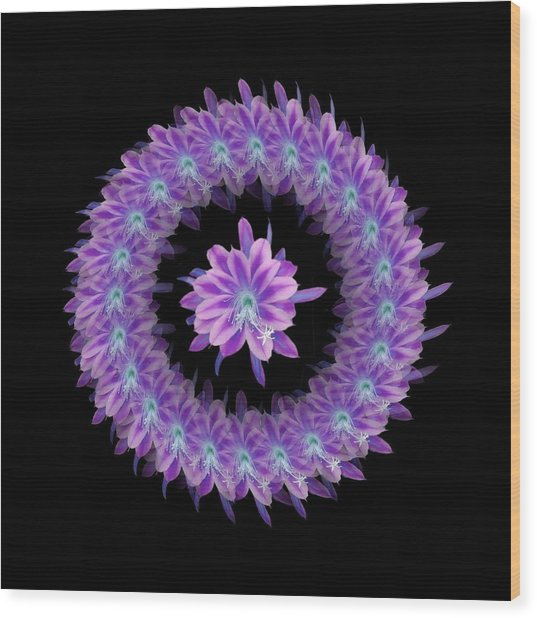 The Mandala Of Purple Tropical Flower Wood Print by Jacqueline Migell