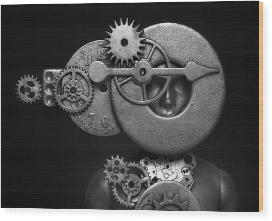 The Mariner 2 Wood Print