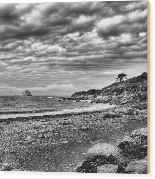 The Mewstone, Wembury Bay, Devon #view Wood Print