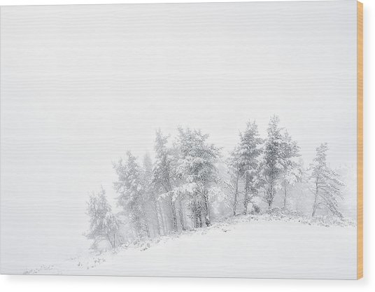 The Minimal Forest Wood Print