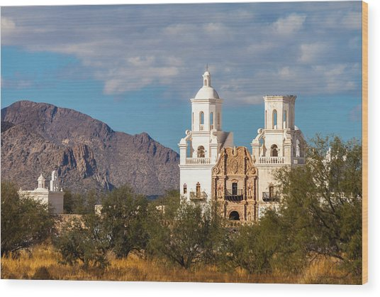 Wood Print featuring the photograph The Mission And The Mountains by Ed Gleichman