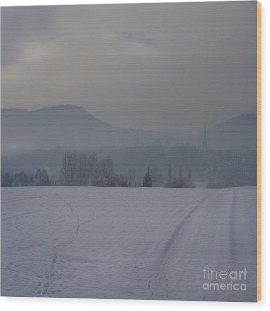 The Misty Wintery Afternoon Wood Print by Angel Ciesniarska