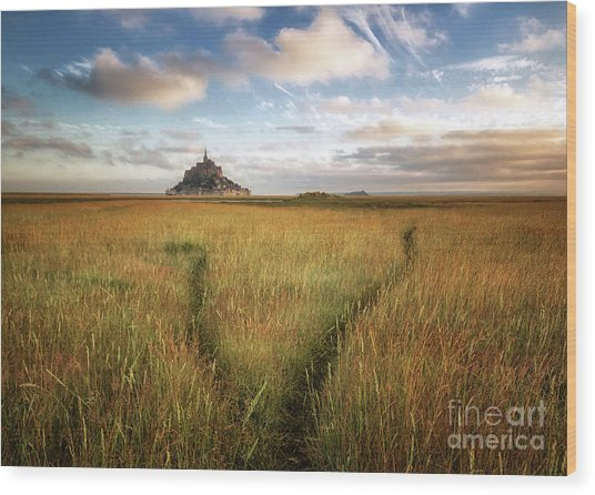 The Mont Saint-michel's Bay Wood Print