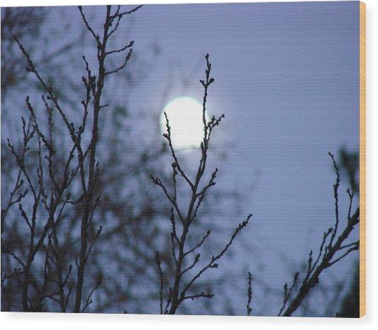 The Moon Wood Print by Liz Vernand