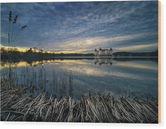 The Moritzburg Castle Is A Baroque Palace In Moritzburg In The German State Of Saxony. Saxony, Germany. Wood Print