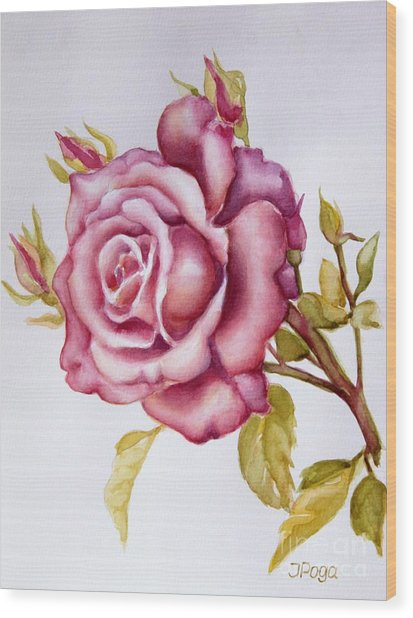 The Morning Rose Wood Print