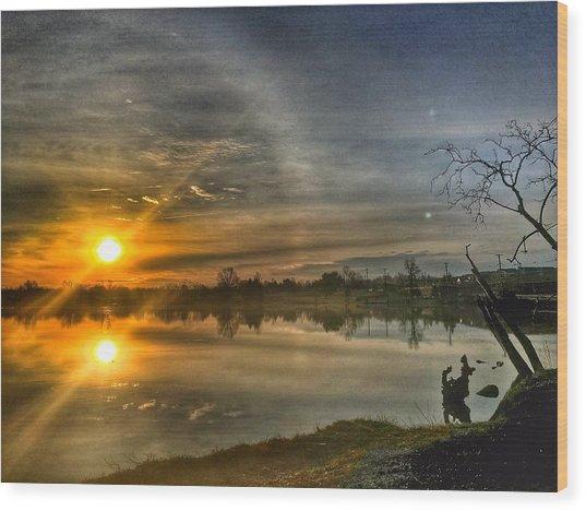 The Morning Sun Dog Wood Print