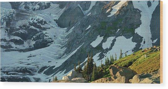 The Mountain Goat  Wood Print