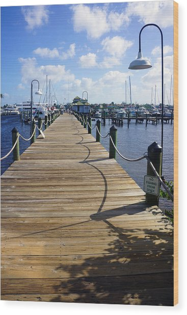 The Naples City Dock Wood Print