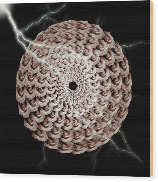 The Natural Elements Of Mandala Rose And Lightning - Left Wood Print by Jacqueline Migell