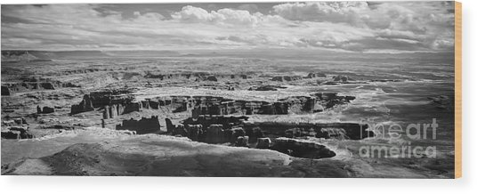 Wood Print featuring the photograph The Needles At Canyonlands by Scott and Amanda Anderson