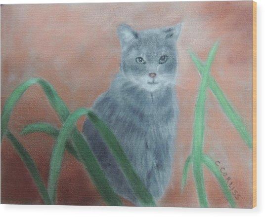 The Neighbor's Cat Wood Print