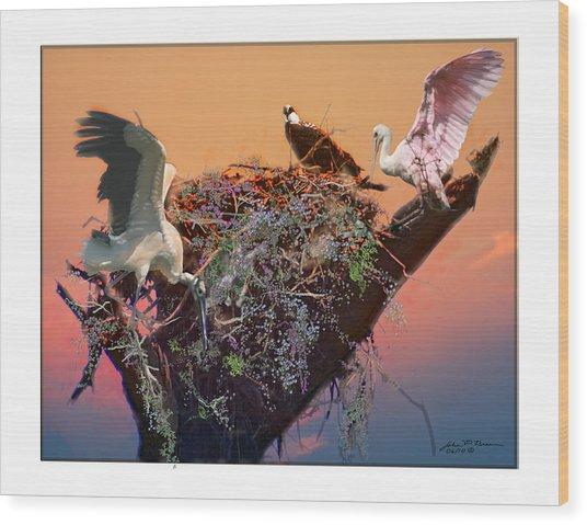 The Nest Wood Print by John Breen