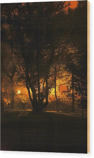 The Night Glows Wood Print by Megen McAuliffe