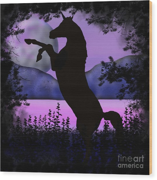 The Night Of The Unicorn Wood Print