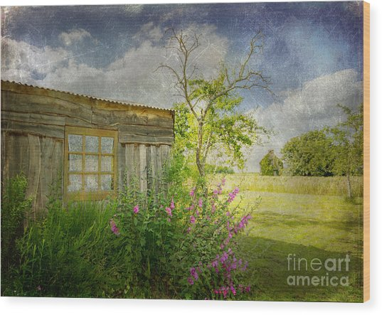 The Old Barn Wood Print