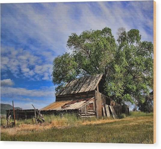 The Old Barn Wood Print by Gene Praag