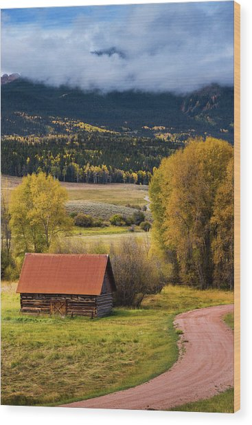 Wood Print featuring the photograph The Old Barn On Ohio Pass by John De Bord