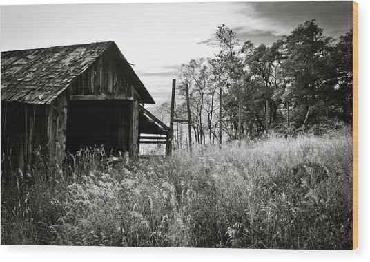The Old Shed Wood Print