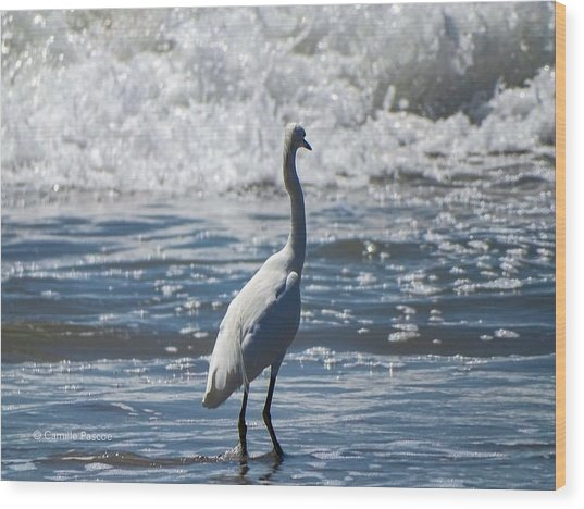 Egret And The Waves Wood Print