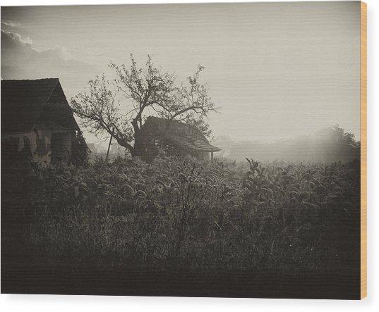 The Old House Wood Print by Svetlana Peric