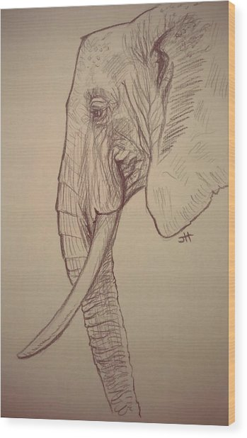 Wood Print featuring the drawing The Old Leader by Jennifer Hotai