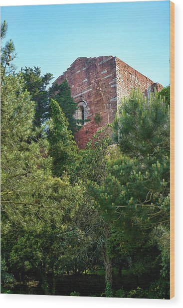 The Old Monastery Of Escornalbou Surrounded By Trees In Spain Wood Print
