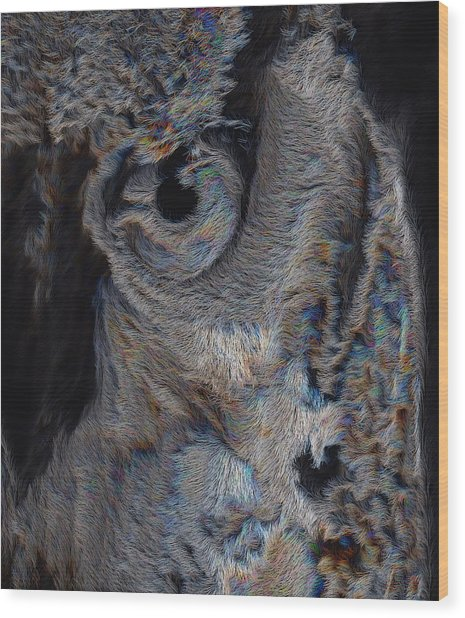 The Old Owl That Watches Wood Print