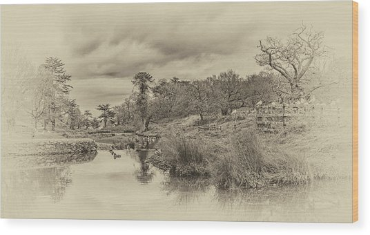 The Old Pond Wood Print