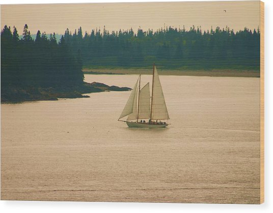 The Old Schooner Wood Print by Dennis Curry