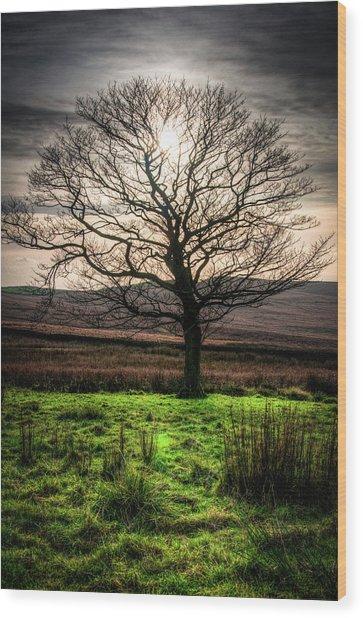 The One Tree Wood Print