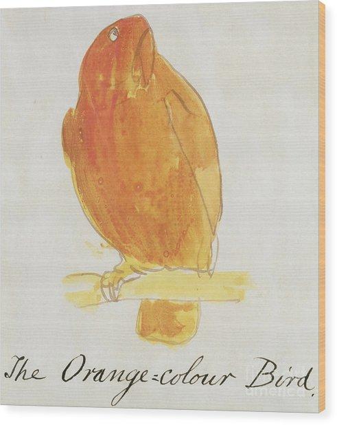The Orange Color Bird Wood Print