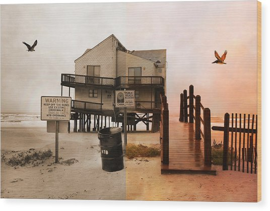 The Osprey And The Pelican Wood Print
